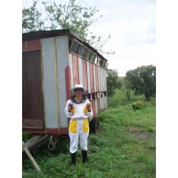 Prodej medu- Alena Gobyová- Teplýšovice- okres Benešov