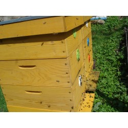 Prodej medu- Miroslav Pinc- Srbsko- okres Beroun