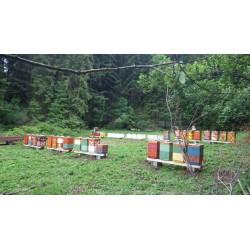Prodej medu- Ján Orinčák- Spišská Nová Ves