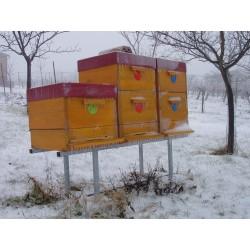 Prodej medu- Jan Pěček- Újezd u Brna- okres Brno-venkov