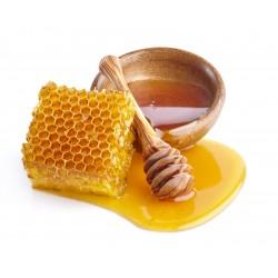 Prodej medu Včelí farma Štěpánovi- Tábor