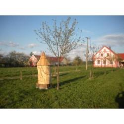 Prodej medu Pavel Kindl- České Budějovice