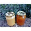 Prodej medu Marek Macura- Toužim- okres Karlovy Vary