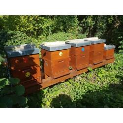 Prodej medu- Martin Koukal- Lysá nad Labem- okres Nymburk