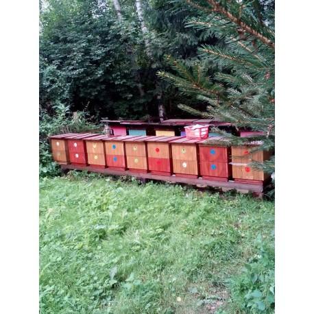 Prodej medu z tábořiště U Včelky- Okounov- okres Chomutov