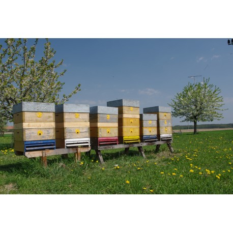 Prodej medu- Jan Prostředník- okres Náchod