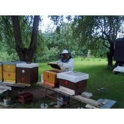 Prodej medu Milan Houska- Praha 11- Háje