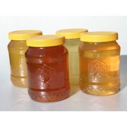 Prodej medu Hana a Jiří Jindrovi- Teplice