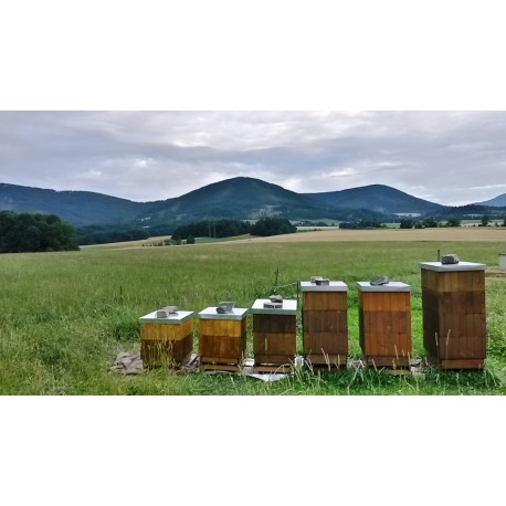 Prodej medu Radim Košař- Kozlovice- okres Frýdek-Místek
