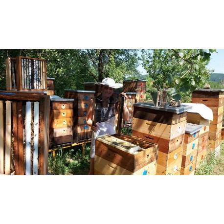 Prodej medu Štěpán Frýbert- Praha 6