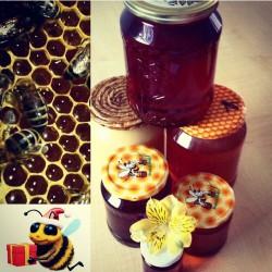 Prodej medu Petr Bečaver- Toužim- okres Karlovy Vary