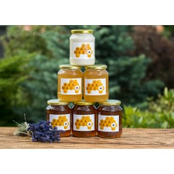 Prodej medu Petr Kostelecký- Říčany u Prahy- okres Praha-východ