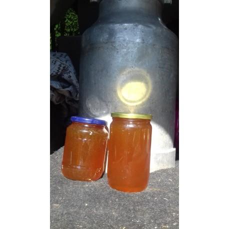Prodej medu Josef Suk- Tachov