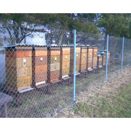 Prodej medu František Daníček- Klíčany- okres Praha-východ