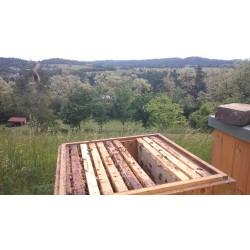Prodej medu Lenka Vochocová- Kostelec, Hromnice- Plzeň-sever
