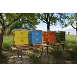 Prodej medu Marcela Canóová- Votice- okres Benešov