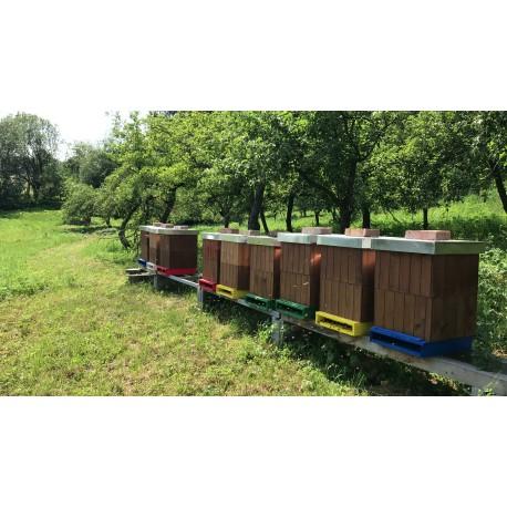 Prodej medu Václav Pavelka- Velemín- okres Litoměřice