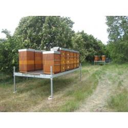 Prodej medu Radomil Rubeš- Kozomín- okres Mělník