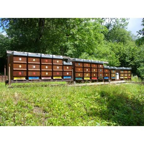 Prodej medu- Jaromír Skotnica- okres Frýdek-Místek