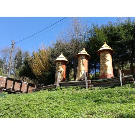 Prodej medu Karel Klimt- Dobřichovice- okres Praha-západ