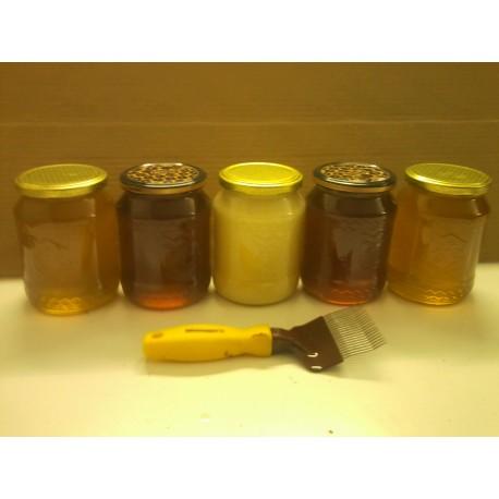 Prodej medu- Pavel Járka- okres Benešov