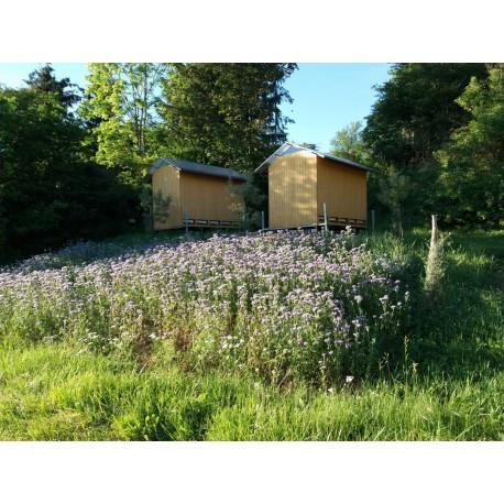 Prodej medu Vecheta Roman- Čáslavice- okres Vysočina