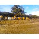 Prodej medu Otakar Šimůnek- Benešov- okres Benešov