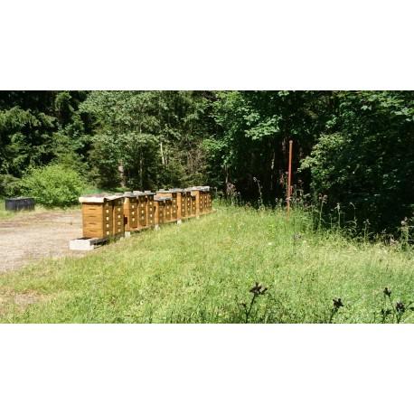 Prodej medu Jindřich Kroupa- Strašín- okres Klatovy