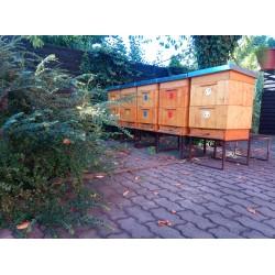 Prodej medu Michal Kolář- České Budějovice