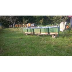 Prodej medu Antonín Jelínek- Úsov- okres Šumperk