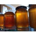 Prodej medu Dominik Večeřa- Těšetice- okres Znojmo