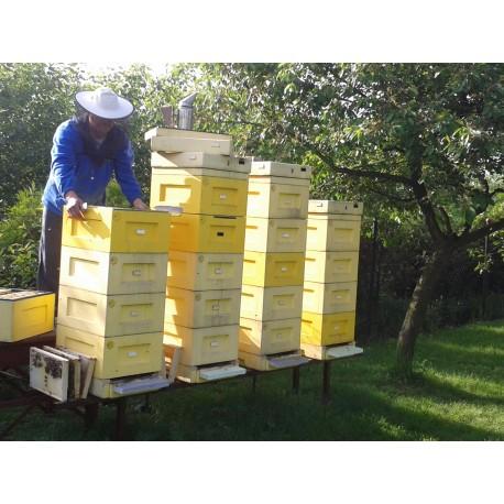 Prodej medu- Boleslav Nytra- okres Karviná