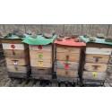 Prodej medu Petr Vinš- Ustí nad Labem