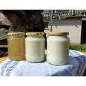 Prodej medu František Pokorný- Znojmo