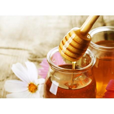 Prodej medu- Josef Kodet- okres Praha-východ
