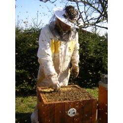 Prodej medu- Radek Hradil- okres Přerov