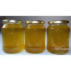 Prodej medu Michal Kánský- Třebnouševes – Hořice- okres Jičín