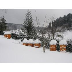 Prodej medu Milan Dašek- Česká Třebová- okres Ústí nad Orlicí