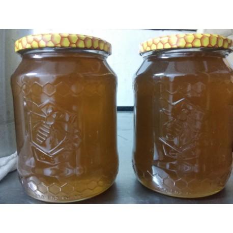 Prodej medu- Rostislav Kugler- okres Znojmo