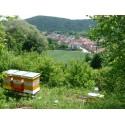 Prodej medu Jiří Rozehnal- okres Brno-město