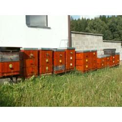 Prodej medu- Jindřich Vaněček- Mezilesí- okres Pelhřimov