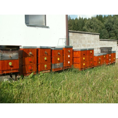 Prodej medu- Jindřich Vaněček- okres Pelhřimov