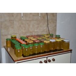 Prodej medu Olga Kaucká- Hořany- okres Kutná Hora