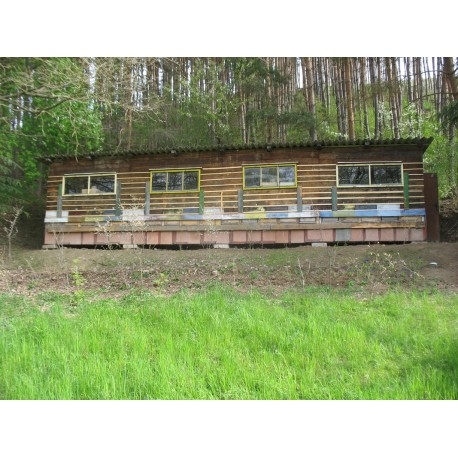 Prodej medu- Roman Dvořák- okres Benešov