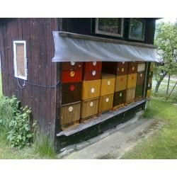 Prodej medu František Musil- Heřmaničky- okres Benešov