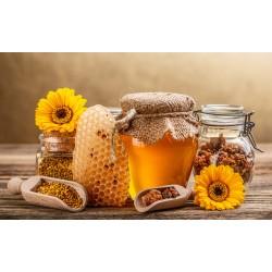 Prodej medu Jaromír Heczko- Těrlicko- okres Karviná
