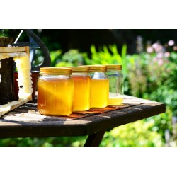 Prodej medu Libor Ždímal- Žumberk- okres Chrudim