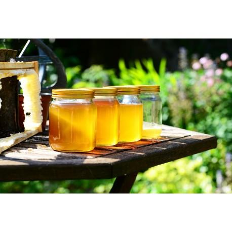 Prodej medu- Libor Ždímal- okres Chrudim