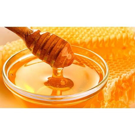 Prodej medu- Vilém Jelen- okres Znojmo