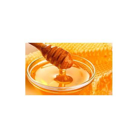 Prodej medu- Benedikt Križan- okres Hradec Králové